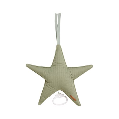 Picture of Star-shaped music box Pure Olive