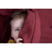 Picture of Cot duvet cover Pure Indian Red