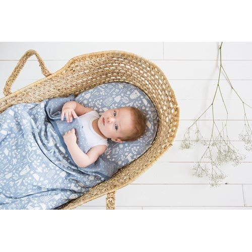 Picture of Bassinet blanket cover Adventure Blue