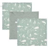 Picture of Facecloths Ocean Mint / Pure Mint