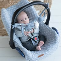 Picture of Car seat 0+ cover Lily Leaves Blue