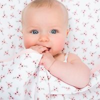 Picture of Bassinet duvet cover Peach Poppy