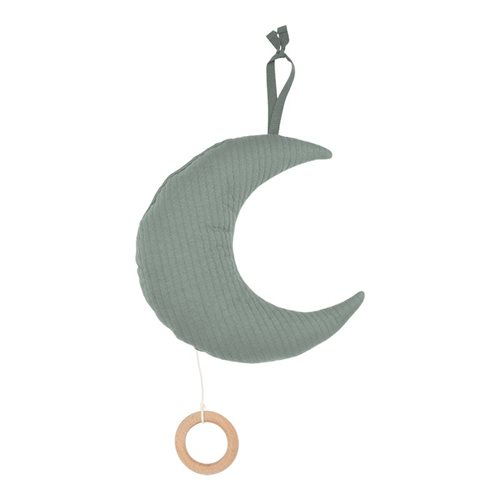 Picture of Moon-shaped music box Pure Mint