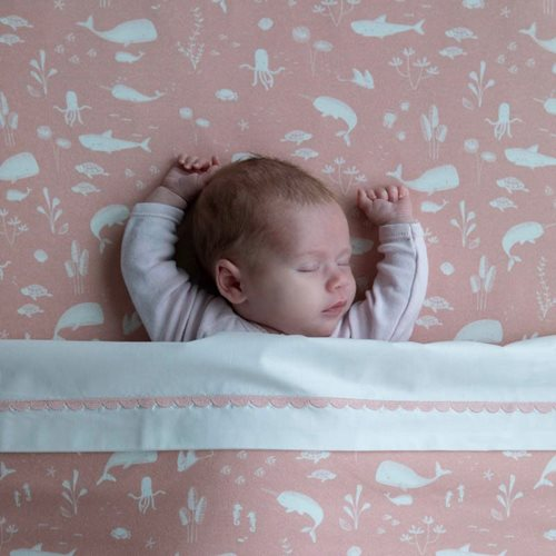Picture of Fitted bassinet sheet Ocean Pink