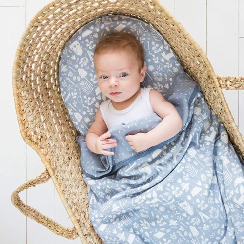 Picture of Fitted bassinet sheet Adventure Blue