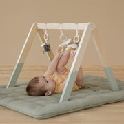 Picture of Baby gym Little Goose