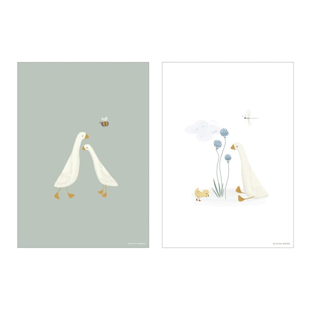 Picture of Poster A3 - Little Goose