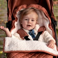 Picture of Footmuff Stroller - Rust