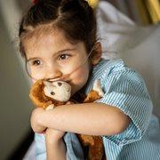 Le petit singe de Sophia